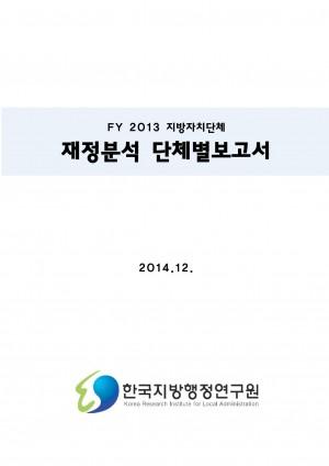 2015 재정공시 - 03_2014년지방자치단체재정분석단체�