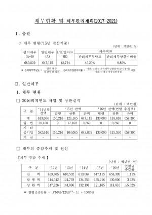 '16채무현황 및 채무관리계획('17~'21