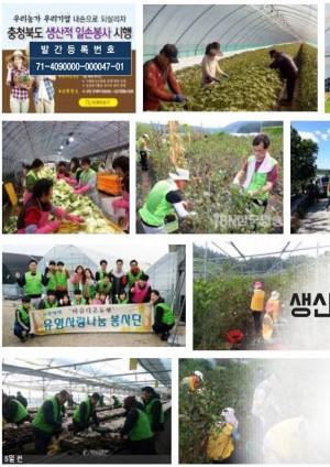 생산적 일손봉사 신패러다임 정책연구용역(요약보고서