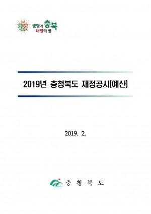 2019년 재정(예산)공시